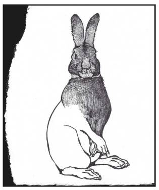 ink-rabbit